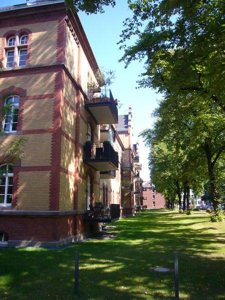 Neuer Garten p1020888